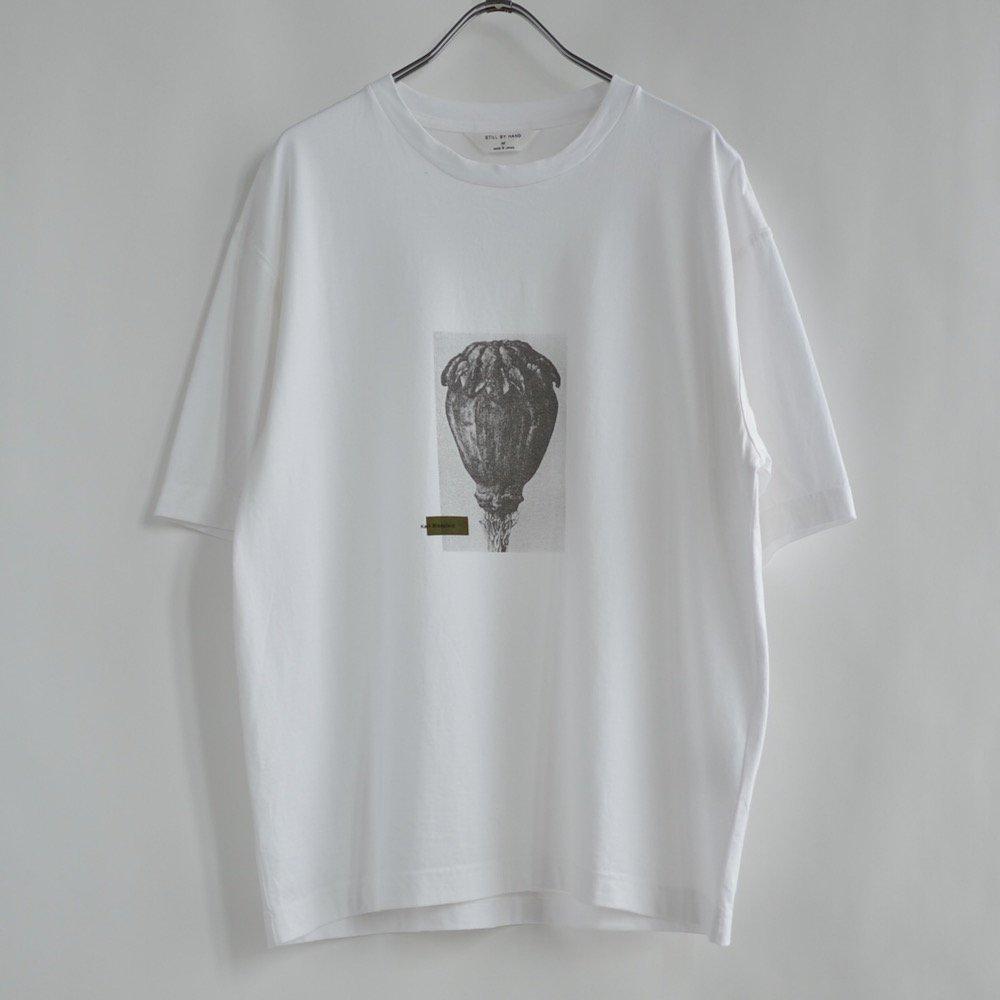 プリントTシャツ2CS05212