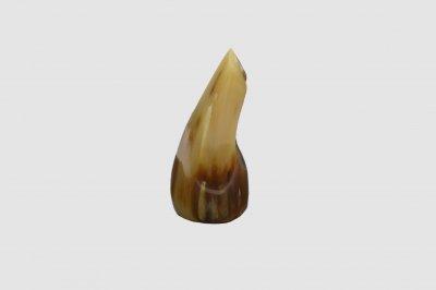 三線用爪 水牛の角製バチ(白L)