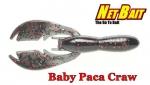 Baby Paca Craw
