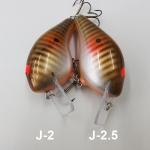 J-2 & J-2.5