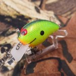 PH Custom Lures Tiny Hunter # Copper Bream