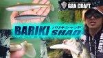 【お一人様一個】GAN CRAFT バリキシャッド 4.8in 【メール便可】