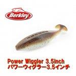 バークレイ Power Wiggler 3.5inch / パワーウィグラー3.5インチ【1パックならメール便可】