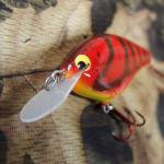 PH Custom Lures Skinny P Crankbait # Nasty