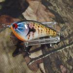 PH Custom Lures Squeaky P #200  Golden Bream