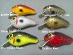 D&W Customs Bee Shad Shallow