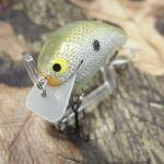 PH Custom Lures Little Huter Squarebill Crankbait # Money