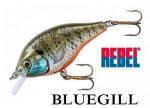 REBEL Bluegill / レーベル ブルーギル