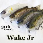3:16 lure co. Wake Jr