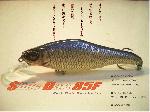 Nishine Lure Works Slide Dart 85F / スライドダート85F