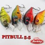 Berkley / バークレイ PITTBULL5.5 ピットブル5.5