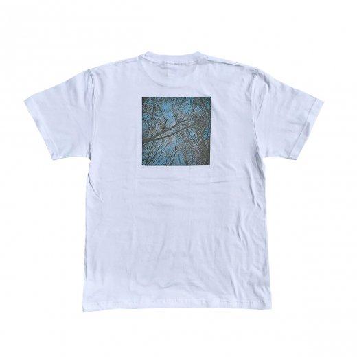 【ART】アート 春よ、恋  S/S TEE  c: White