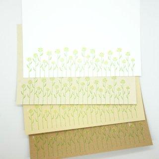 菜の花のポストカード(knoten)