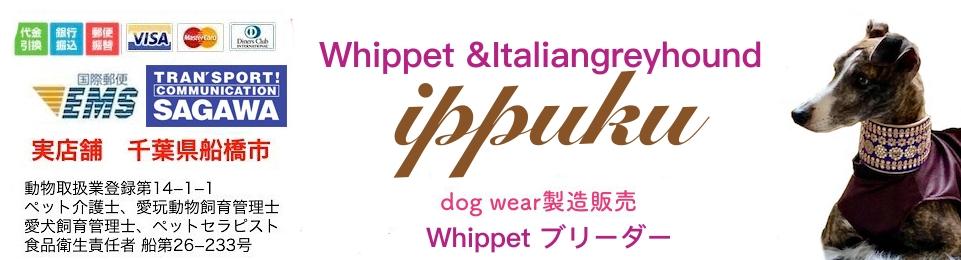 イタリアングレイハウンド&ウィペットの服ippuku