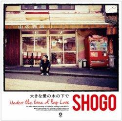 1st SOLO album「大きな愛の木の下で」