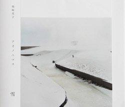 <B>アオノニマス 雪</B> <BR>柿崎真子 I Masako Kakizaki
