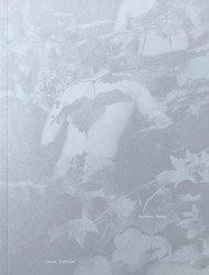 <B>Halfstory Halflife (signed)</B><br>Raymond Meeks