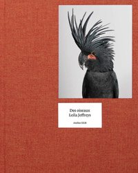 <B>Des Oiseaux</B> <BR>Leila Jeffreys