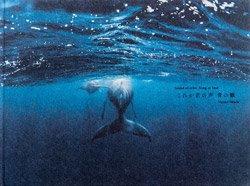 <B>これが君の声 青の歌 -Sound of echo,Song of blue-</B> <BR>岡田裕介 | Yusuke Okada