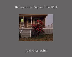 <B>Between the Dog and the Wolf 2nd edition (Cover A)</B> <BR>Joel Meyerowitz