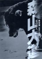 光の狩人: 森山大道1965-2003 展 図録