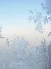 川内倫子 (Rinko Kawauchi): SNOWFLAKE TWELFTH