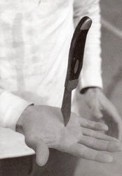 Peter Sutherland: Final Bargain