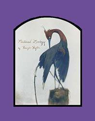 Laszlo Layton: Pictorial Zoology