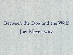 Joel Meyerowitz: Between the Dog and the Wolf