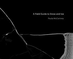 Paula McCartney: A Field Guide to Snow and Ice