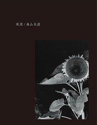 森山大道: 風景 | Daido Moriyama: Fukei (COVER b.)