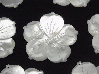 天然石卸 高品質ホワイトシェル(白蝶貝)AAA 大粒フラワー 45mm ホワイト 1個580円!