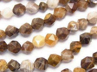 天然石卸 1連1,180円!ペトリファイドウッド(珪化石) 24面ラウンドカット6mm 1連(約37cm)