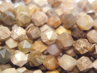 天然石卸 ペトリファイドウッド(珪化石) 24面ラウンドカット8mm 半連/1連(約37cm)