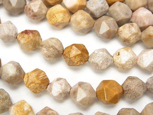 フォシルコーラル(化石珊瑚) 24面ラウンドカット8mm 1連(約36cm)