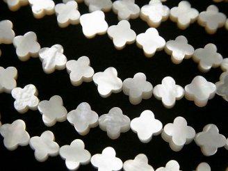 天然石卸 高品質ホワイトシェル(白蝶貝)AAA フラワーモチーフ6×6×2mm 半連/1連(約35cm)
