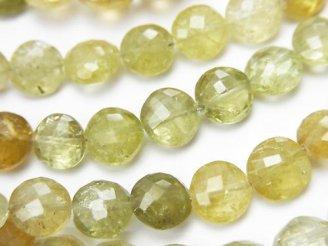 天然石卸 宝石質グロッシュラー・ガーネットAA++ コインカット カラーグラデーション 半連/1連(約24cm)