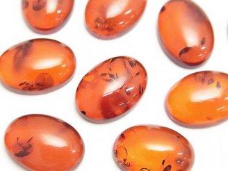 天然石卸 バルティックアンバー(琥珀) オーバル型カボション18×13mm 【ダークブラウン】 1粒1,980円!