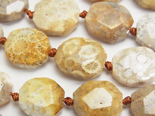 フォシルコーラル(化石珊瑚) フラットタンブルカット 半連/1連(約38cm)