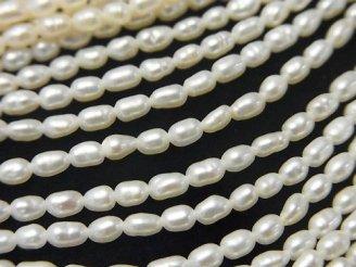 天然石卸 1連580円!小粒淡水真珠AA ライス4×2.5×2.5mm ホワイト 1連(約37cm)