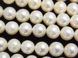 天然石卸 1連3,980円!淡水真珠AAA' セミラウンド7〜8mm ホワイト 1連(約38cm)