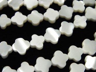 1連880円!マザーオブパール ホワイト フラワーモチーフ 8×8×2.5mm 1連(約37cm)