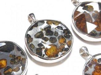 天然石卸 稀少!ケニア産セリコパラサイト隕石 ペンダントトップ 両面仕上げ27mm SILVER925製