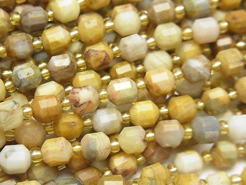 【動画】フォシルコーラル(化石珊瑚) ダブルポイント チューブカット6×5mm 1連(約37cm)
