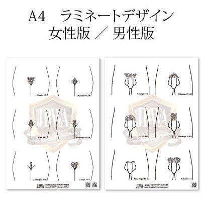 【全協会員対象】デザインシート A4 ラミネート