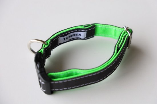DOG COLLAR  GREY / NEON GREEN