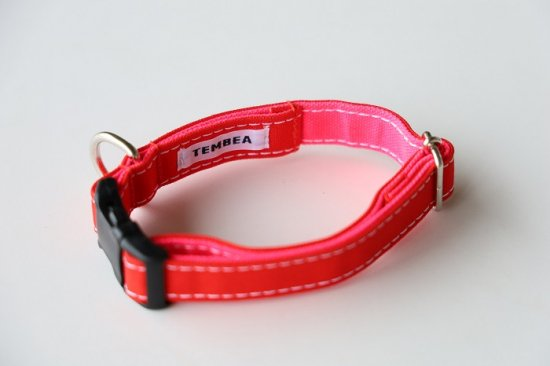 DOG COLLAR  RED / NEON PINK