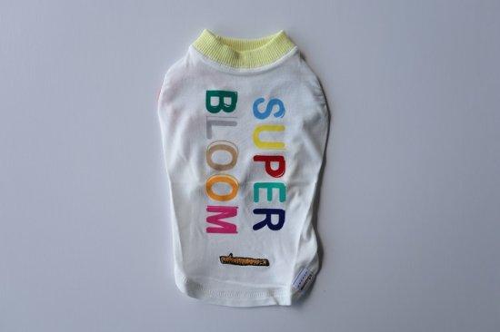 SUPER BLOOM Tシャツ/アウトラスト ホワイト
