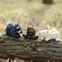 犬のおもちゃ 森の仲間シリーズ