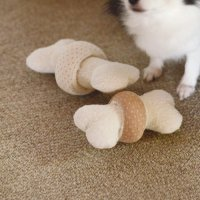 犬のおもちゃ オーガニックリングボーン